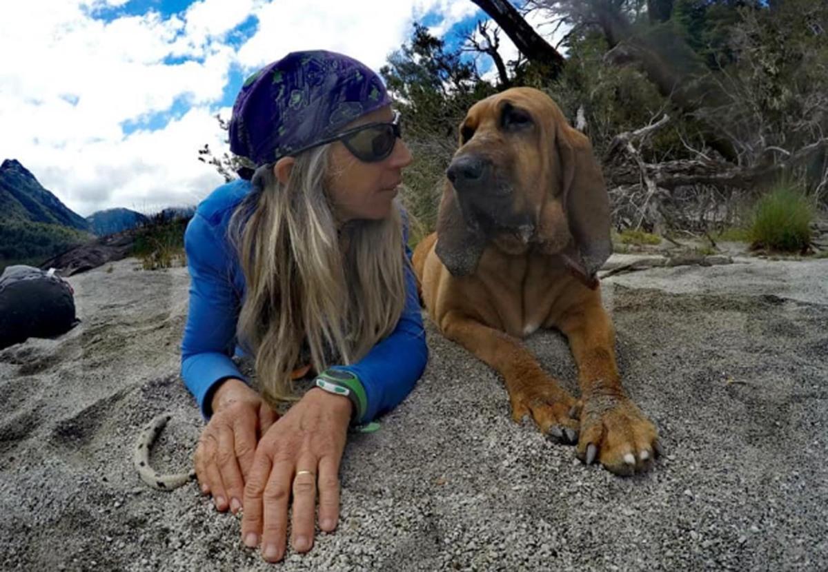 Murió ResQ, la perra rescatista más famosa de la región
