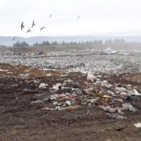 """Presentan amparo judicial ante el """"mal manejo"""" del Centro Ambiental"""